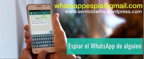 informacion what.sapp