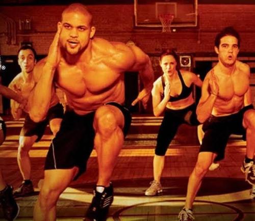 insanity workout + insanity máx 30