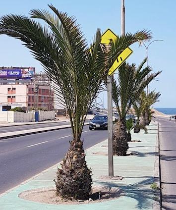 inspección y mantenimiento de señales de tránsito