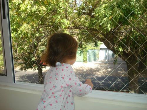 instalación mallas seguridad monofilamento niños gatos
