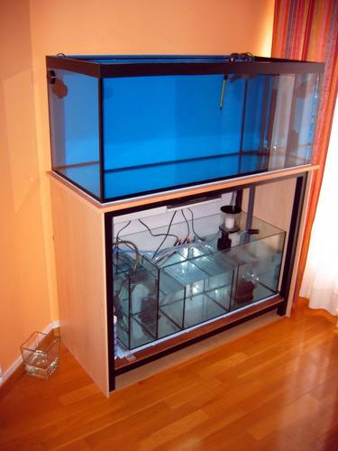 instalación y mantenimiento de acuarios en casas y comercios