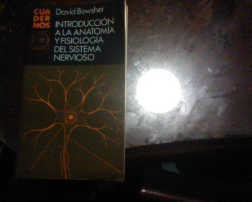 Introduccion A La Anatomia Y Fisiologia Del Sistema Nervioso - $ 40 ...