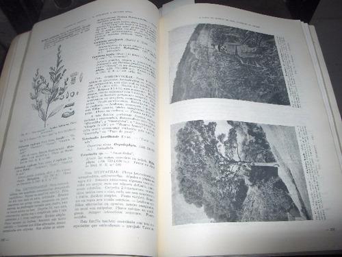 inventario da flora de ibiti ex monte alegre amparo sp