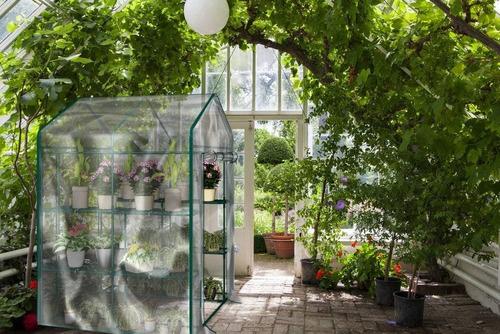 invernadero ambulante grande plantas cubierta trasparente
