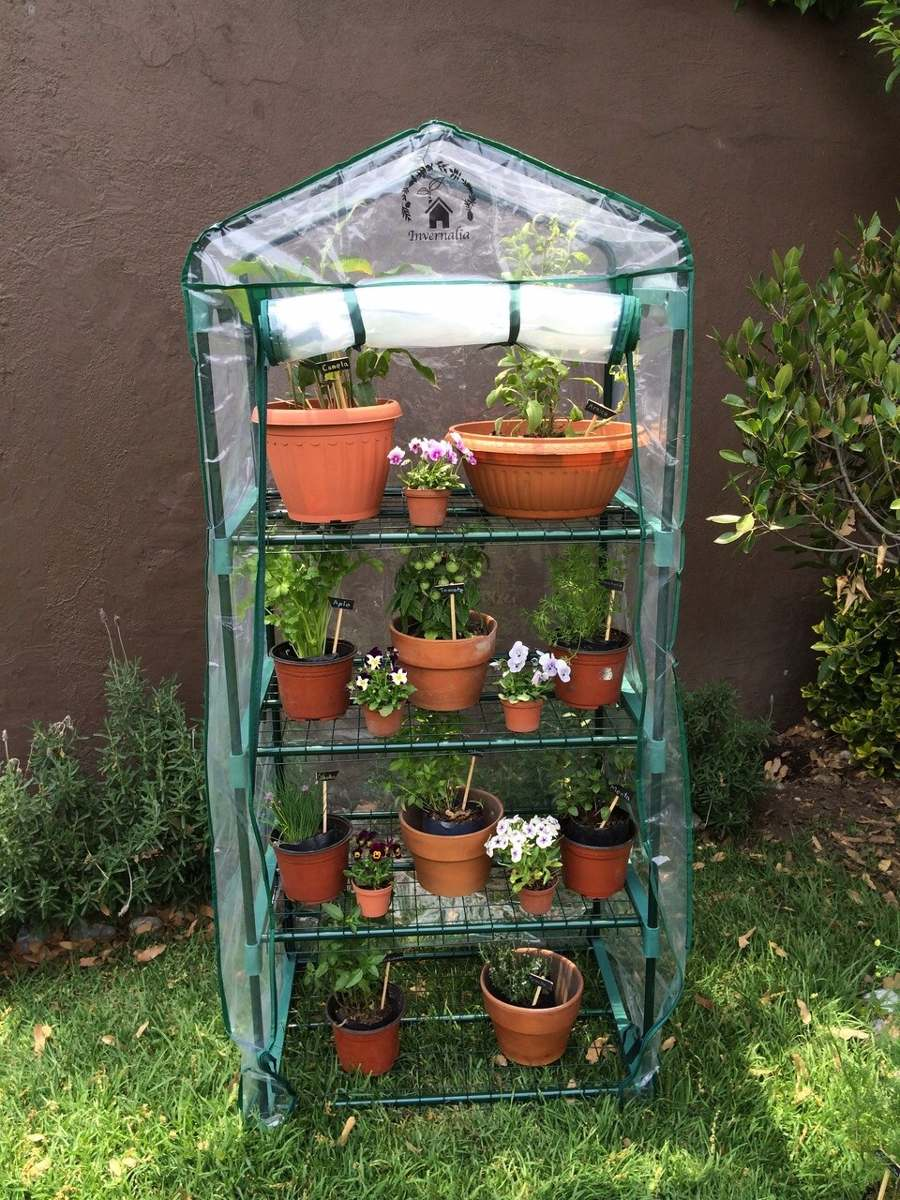 Invernadero casero 1 en mercado libre for Que es un vivero ornamental