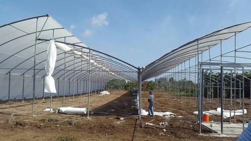 invernaderos agricolas