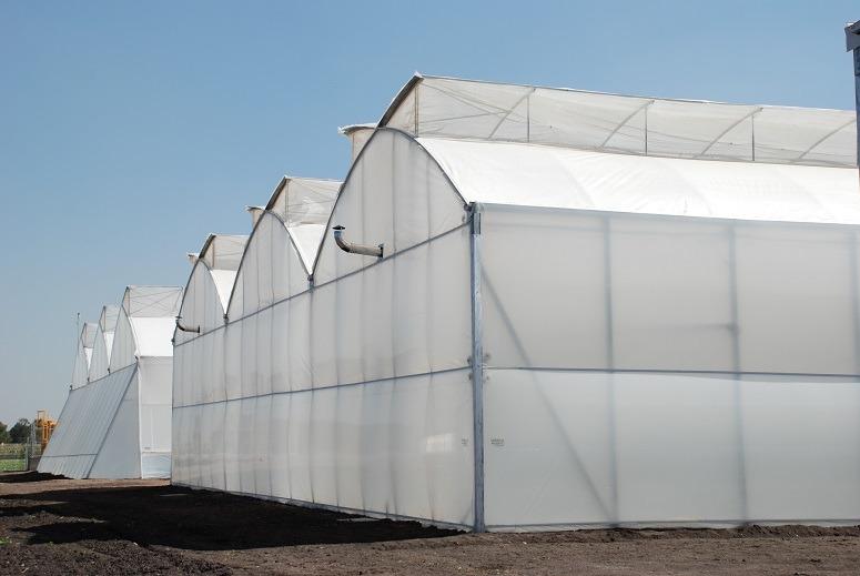 Invernaderos casa sombras proyectos llave en mano en mercado libre - Invernaderos para casa ...