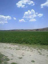 inversionistas se vende terreno 68 hectáreas por atongo,el marqués,qro