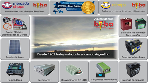 inversor conversor senoidal pura 600w. 12v. probattery