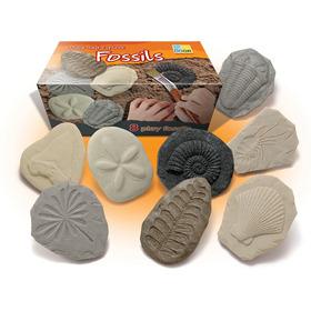 Investiguemos Fósiles 8 Pzas. - Edukim