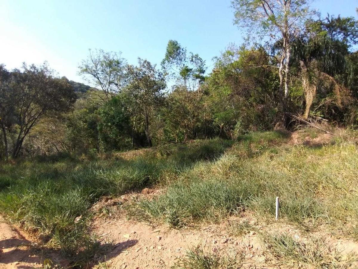 investimento em terras hoje e o mais seguro!!