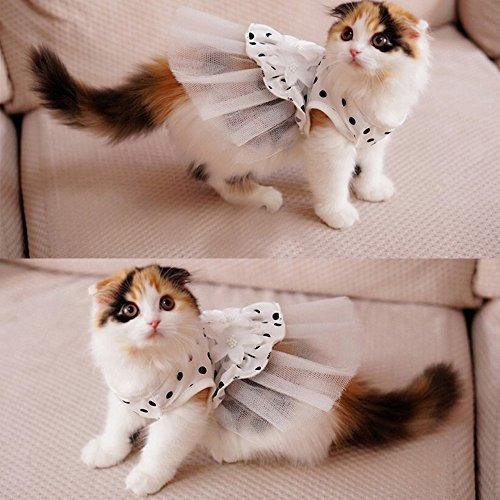 i\'pet® princesa floral gato partido nupcial vestido pequeño