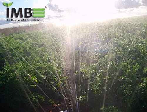 irrigação jardim mangueira