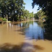 isla - zona delta tigre
