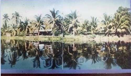 islamar terreno venta acapulco guerrero