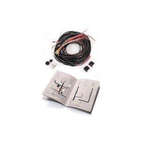 Vw Type 3 T3 Sello De La Puerta ISP Notchback Fastback Squareback esponja de caucho 61-73