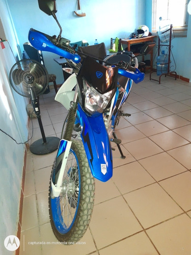 italika dm 250