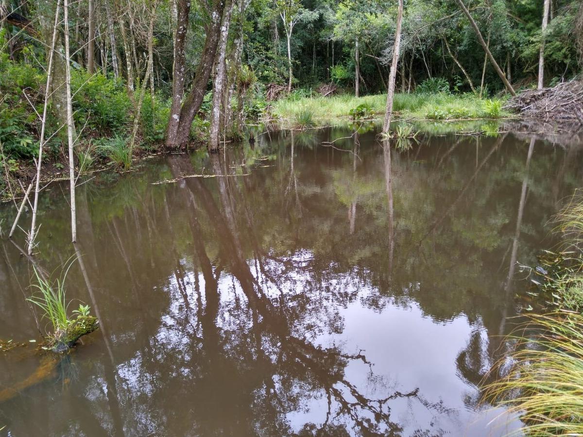 j terreno plano 1000m2 lago de pesca para sua chácara