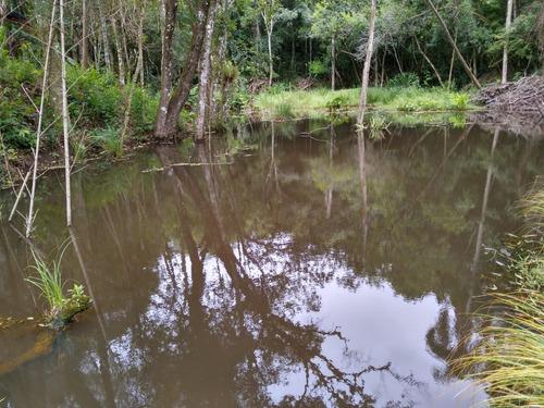 j terreno plano de 1000m2 com lago para pesca demarcados