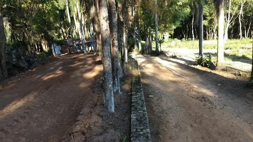 j terrenos 1000m2 fácil acesso a rodovia bunjiro nakao