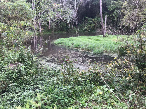 j1 bons terrenos em ibiúna local c/ varias chacaras ao redor