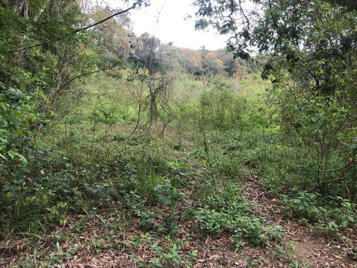 j1 lotes em ibiúna 600m², acesso pela raposo tavares