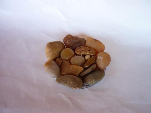 jaboneras de resina con inclusiones