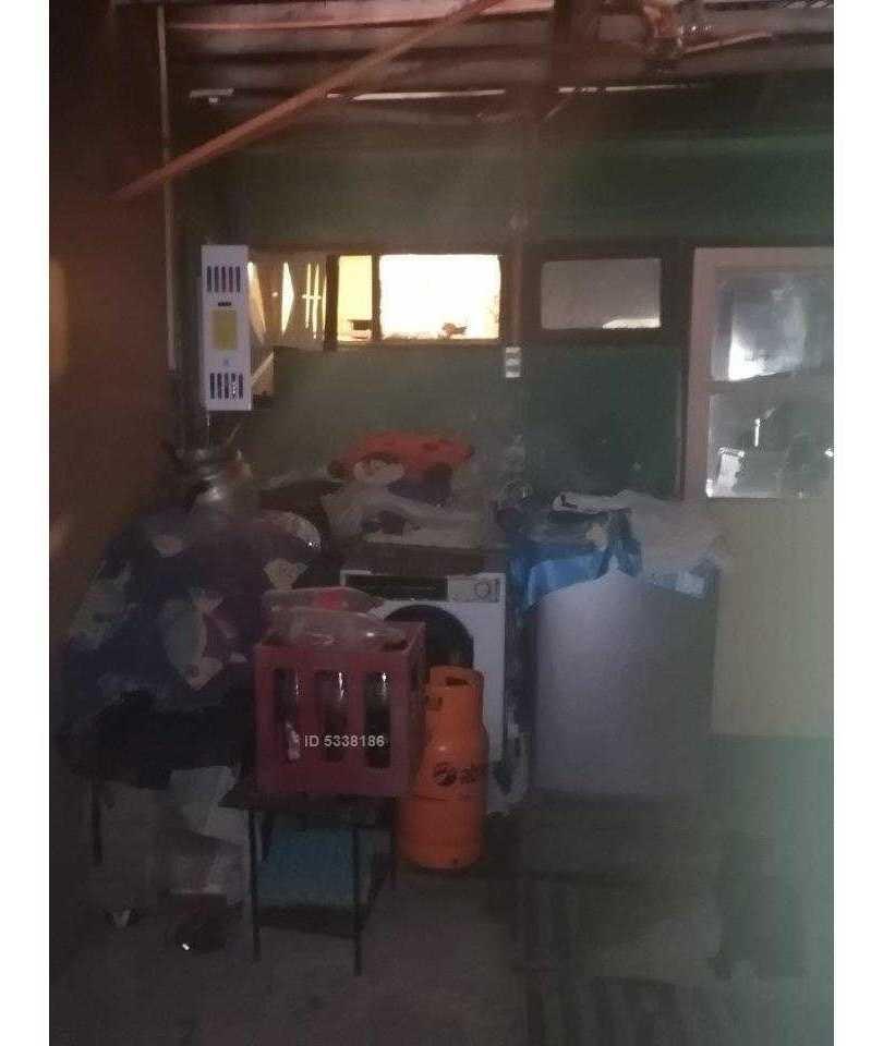 jacaranda / tagua tagua