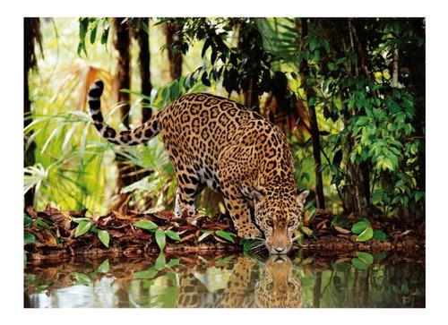 jaguar animales jungla 2000 piezas rompecabezas clementoni