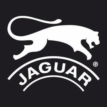 jaguar running zapatilla