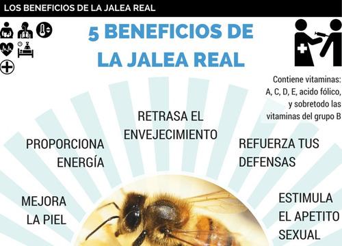 jalea real de yucatan 2 frascos de 25 grs