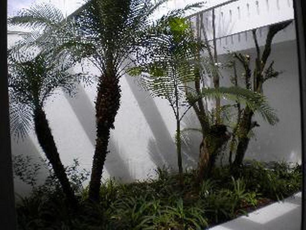 jardim exuberante, - 3-im76124