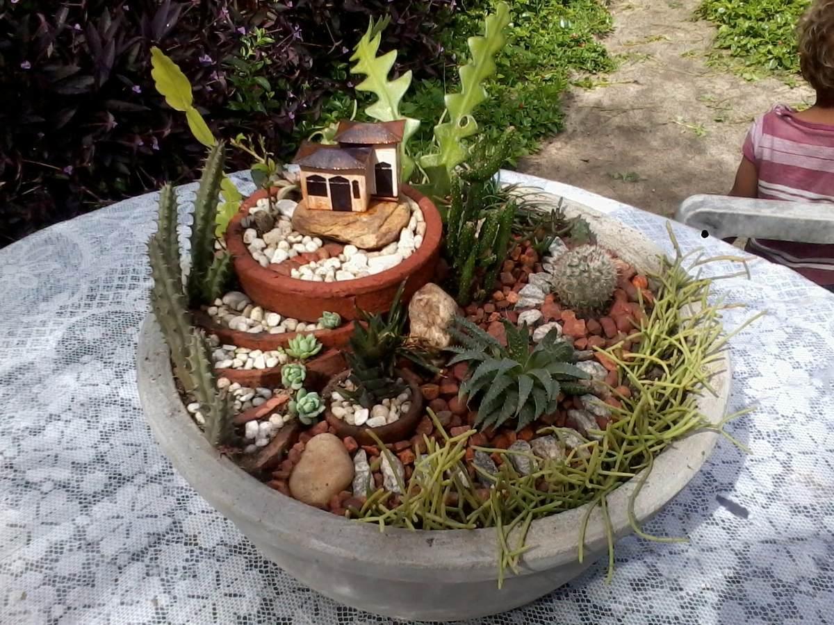 Jardim Miniatura,ou Mini Jardim, Com Cactos E Suculentas ...