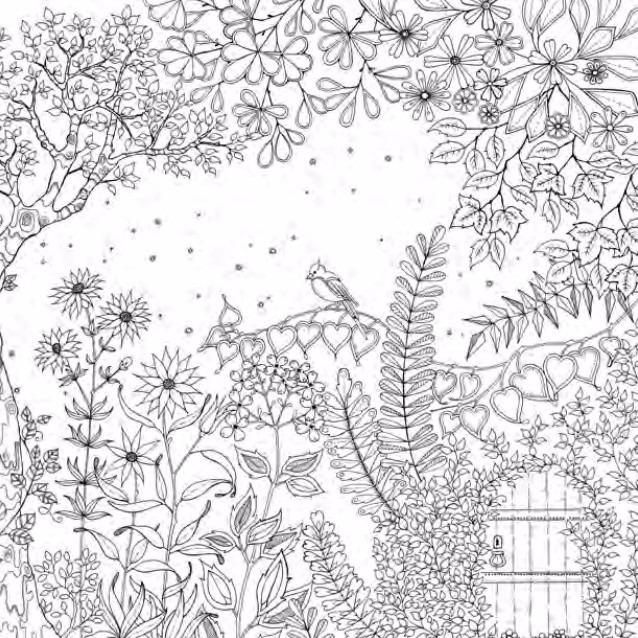 Jardim Secreto Livro De Colorir Anti Stress Caca Tesouro R
