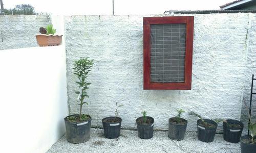 jardim vertical - promoção