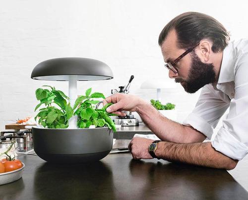 jardín inteligente plantui marca plantui 2420001