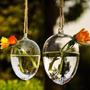 Gota De Cristal Florero Colgante Flores Plantas Hidroponia
