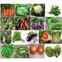 17 Hortalizas Para Tu Huerta Semillas Orgánicas