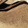 Compost Con Humus De Lombriz En Sacos De 50 Litros