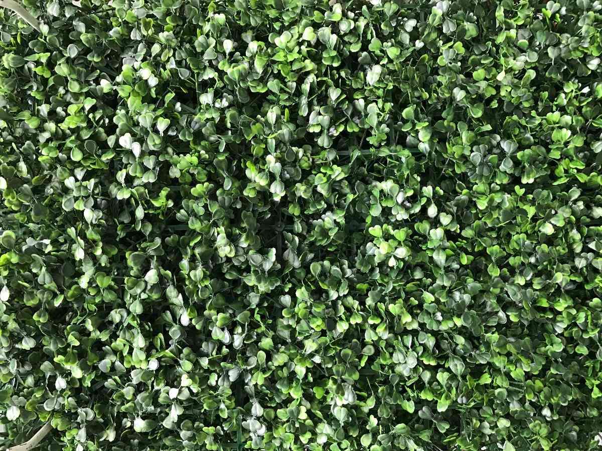 Jardin Vertical Artificial Muro Verde Panel N 1 Pack X 20 3 999