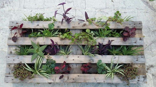 Jardin Vertical Pallet. Beautiful Jardin Vertical De Madera En ...