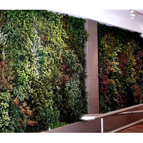 Jardin Vertical Instalación Pared Verde Muro Verde