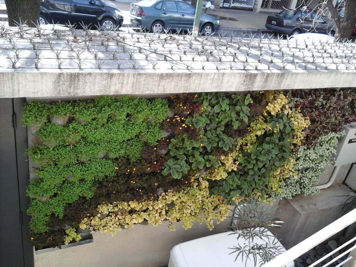 Cuadro jardin vertical cmo hacer un original cuadro - Cuadro jardin vertical ...