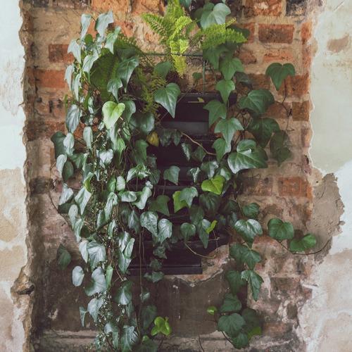 jardín vertical kit por 3 materas. estra - groncol