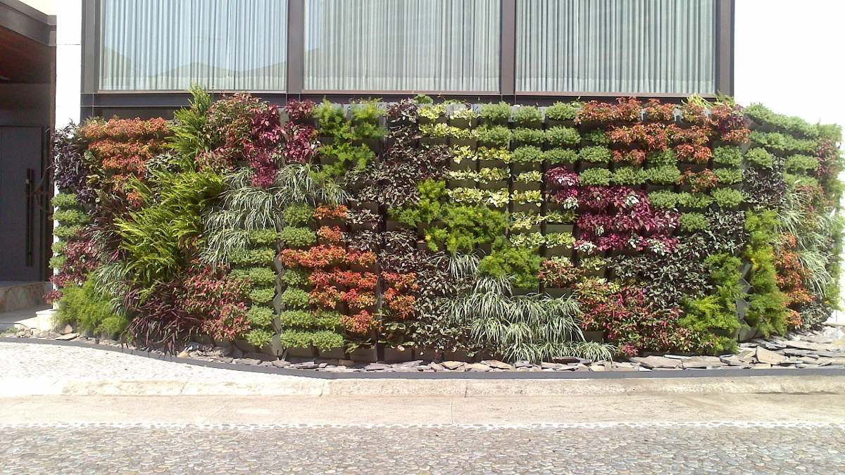 Jard n vertical muro verde huerto vertical fachada for Plantas recomendadas para jardin vertical