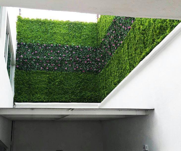 Jardin vertical muros verdes enredaderas para rejas cercos for Reja para jardin vertical