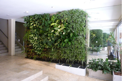 jardin vertical o muro verde, asesoramiento técnico