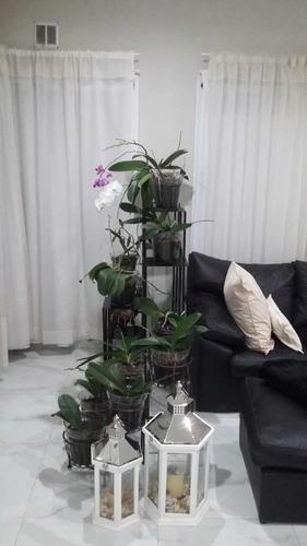 jardín vertical porta macetas en hierro decoración
