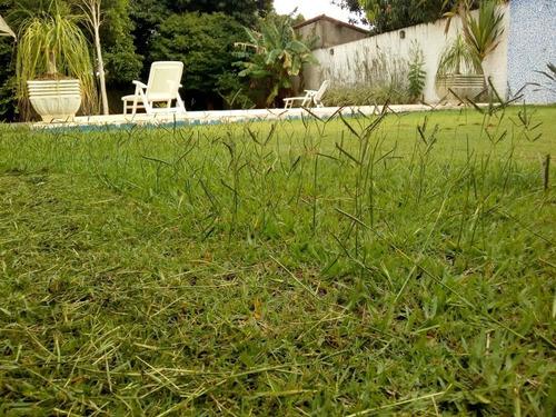 jardinagem e limpeza de terreno