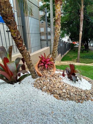 jardinagem e serviços